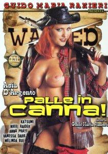 FilmPornoItaliano : Porno Streaming Palle in Canna Video XXX Streaming