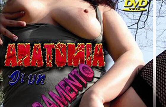 FilmPornoItaliano : Porno Streaming Anatomia di un arrapamento CentoXCento Streaming